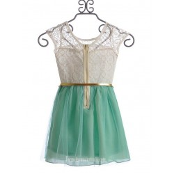 A Line Scoop Neck Organza Mini Cocktail Dress With Gold Belt