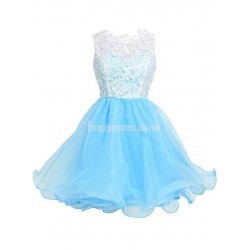 A-line Sleeveless Short/Mini Organza Formal Homecoming Dress/Cocktail Dress With White Top Lace