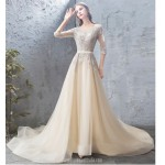 Classic Court/Train Champagne Tulle Evening Dress Scoop-neck V-Back Half Sleeves Party Dress With Appliques/Sequines New