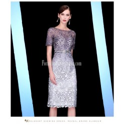 Sheath/Column Medium-length Zipper Back Short Sleeves Lace Evening Dress