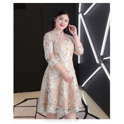 A-line Knee-length Exquisite Embroidery Champagne Plus Size Formal Dress Fashion Stand Collar Zipper Back 3/4 Sleeves Evening Dress