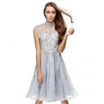 Australia Formal Dresses Cocktail Dress Party Dress Silver A-line High Neck Short Knee-length Chiffon Formal Dress Australia
