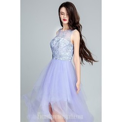 Australia Formal Dresses Cocktail Dress Party Dress Lavender Ball Gown Scoop Long Floor-length Tulle Dress