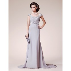 A-line Plus Sizes Dresses Petite Mother of the Bride Dress Silver Court Train Short Sleeve Lace Chiffon