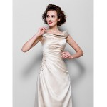 A-line Plus Sizes Dresses Petite Mother of the Bride Dress Champagne Long Floor-length Sleeveless Satin Formal Dress Australia