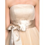 Australia Cocktail Party Dresses Holiday Dress Champagne Plus Sizes Dresses Petite A-line Strapless Tea-length Tulle Formal Dress Australia