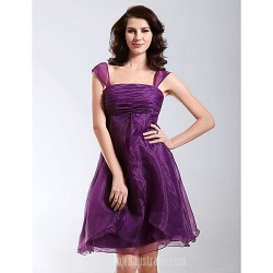 Australia Cocktail Party Dresses Holiday Dress Grape Plus Sizes Dresses Petite A-line Princess Straps Square Short Knee-length Organza