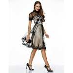 Australia Formal Dresses Cocktail Dress Party Dress Black A-line High Neck Short Knee-length Tulle Formal Dress Australia