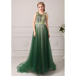 Australia Formal Dress Evening Gowns Dark Green Royal Blue Fuchsia Regency Jade Plus Sizes Dresses Petite A-line Jewel Court Train Tulle